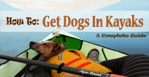 How to get dog in kayak