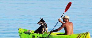 Kayaking with dog