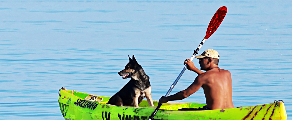 You are currently viewing Kayaking With Dog: The Holy Adventure