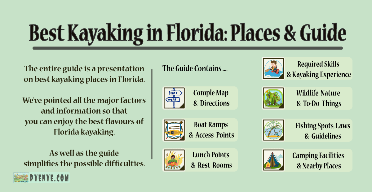 You are currently viewing The best kayaking in Florida: Places and Guideline