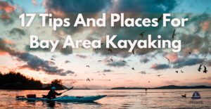 17 Tips And Places For Bay Area Kayaking