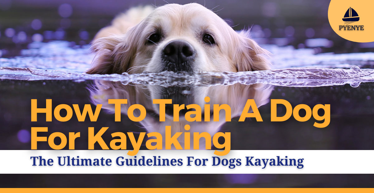 Read more about the article How To Train Dogs For Kayaking